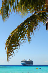 Palm Tree Branches With Cruise Ship in Background