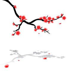 Japanese drawing of cherry tree