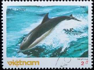 VIETNAM - CIRCA 19805 :  stamp - animal whale