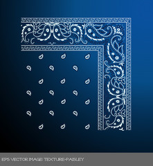 eps Vector image: texture-paisley