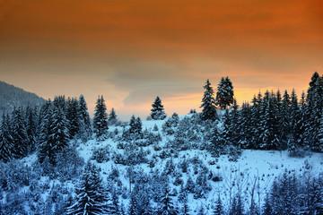 Winter mountain landscape. Sunrise over Christmas frozen trees