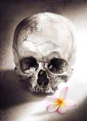 die with love