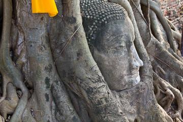 Head of The Sand Stone Buddha Image