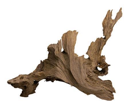 Driftwood for aquarium