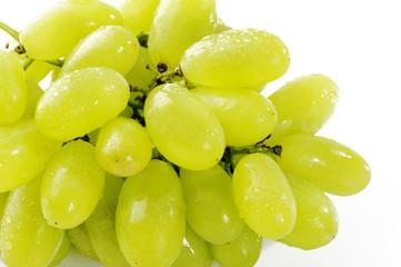 close up wet green grape