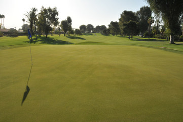 Golf green with flag in hole
