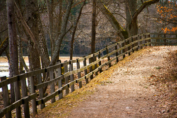 Path with a fence along