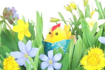 Wielkanocny kurczak na leśnej łące