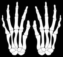 A Pair of Skelton Hands Isolated on Black