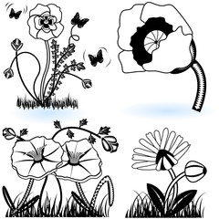 collection of black and white flowers