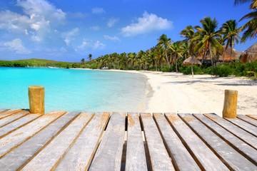 Wall Murals Caribbean Contoy Island palm treesl caribbean beach Mexico