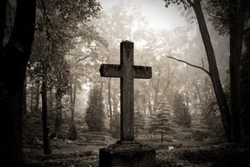 Stores photo Cimetiere cross in fog at the cemetary