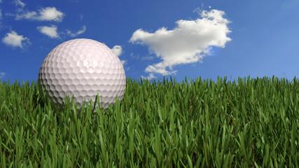 Golf ball on prefect grass