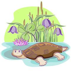 Cheerful Tortoise.