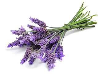 Photo sur cadre textile Lavande lavender
