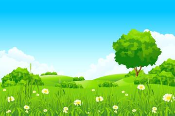 Spoed Fotobehang Blauw Green landscape