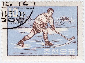 Korea shows sportsman hockey