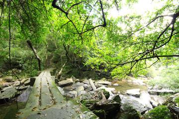 River & Old stone bridge