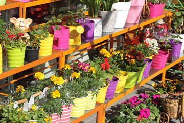 Flower shop outdoor stand with colorful flower pots