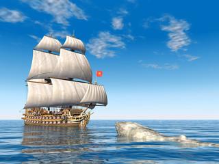 Segelschiff und weisser Wal