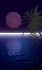pleine lune tropicale