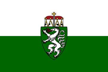 Wall Mural - Steiermark or Styria state flag in Austria