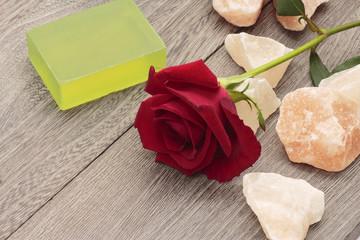 Beauty rose image