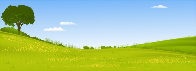 Poster Blue sky Green landscape with lonely tree