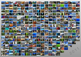 collage immagini