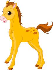 In de dag Pony Cute Horse foal