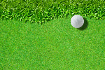 White golf ball on green ( real green grass  background)