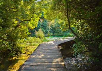 Pathway in KRKA park at Croatia
