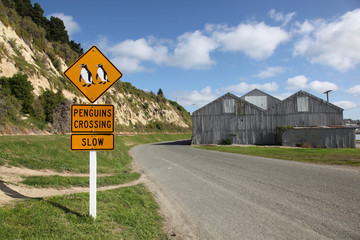 Penguin crossing sign at Oamaru in New Zealand