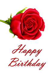 Birthday card with a single red rose