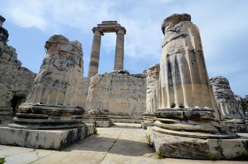 Vestiges du temple de Didymes