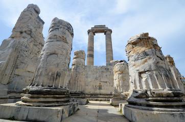 Aux ruines du temple d'apollon à Didymes