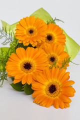 bouquet of orange Gerbera