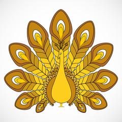 the abstract vector peacock