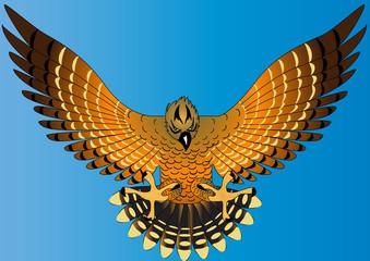 flying powerful eagle