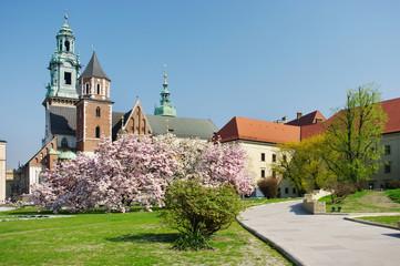 Obraz Wawel w Krakowie, Polska - fototapety do salonu