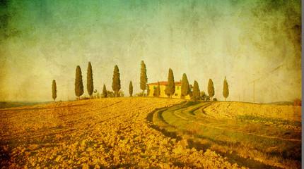 In de dag Olijf vintage tuscan landscape