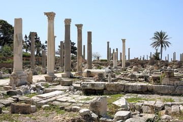 Roman Columns, Tyre, Lebanon