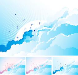 Birds in the cloudy sky