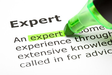 Dictionary definition of the word Expert highlighted in green