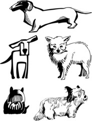 stylized, contour image of dogs of various breeds.