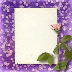 Card for invitation or congratulation with beautiful rose on the