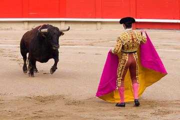 Bullfighting
