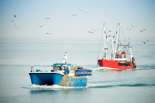 fishing trawlers returning to port on a hazy day