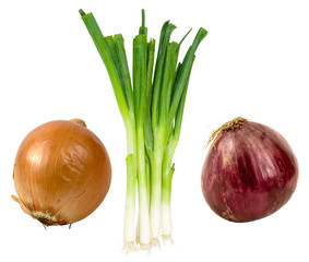 variety of onions on a white background