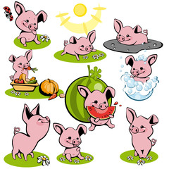 set small pink of piglets